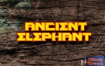 Image for Ancient Elephant