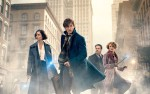 Image for Movie Night at The Wright: Fantastic Beasts