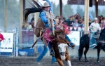 Image for Friday PRCA Rodeo