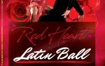 Image for Red Heart Latin Ball
