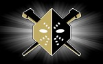 Image for Wheeling Nailers vs Greenville Swamp Rabbits