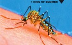 Image for HUNNY / KING OF SUMMER