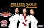 Image for Bee Gees Tribute: Bee Gees Gold