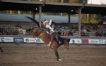 Image for Calcutta and Ranch Rodeo