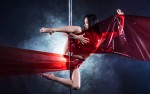 Image for *RESCHEDULED Muse Pole Fitness Presents VERTICAL DESIRES: ENCHANTED FOREST