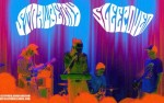 Image for Strawberry Sleepover, with Unholy Sights, The Coral Benders, The Dead Ringers