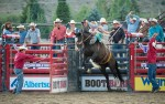 Image for Teton County Fair Rodeo Sponsored by: Jackson Hole Mountain Resort
