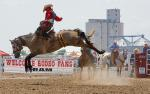 Image for Yuma County Fair Rodeo - Tuesday