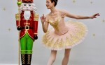 Image for The Sugar Plum Fairy Tea