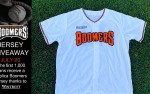 Image for Schaumburg Boomers vs Windy City Thunderbolts
