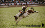 Image for Pendleton Round-Up: Wednesday Performance