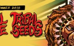 Image for STEEL PULSE and TRIBAL SEEDS, with IYA TERRA
