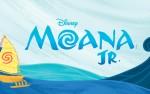 Image for Disney Moana Jr