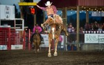 Image for Sunday PRCA Rodeo