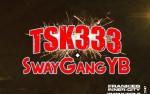 Image for Tsk333
