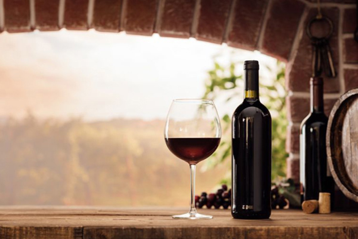 Wine Tasting Dinner: The Wine Of Southern Italy