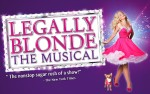 Image for Legally Blonde: The Musical