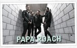 Image for PAPA ROACH WITH SPECIAL GUESTS CHEVELLE AND BAD AUTHORITY