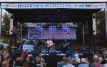 Image for Bradenton Blues Festival - Front Of Stage Tickets