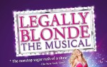 Image for Legally Blonde The Musical