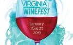 Image for 2019 Coastal Virginia Wine Fest