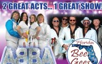 Image for Bee Gees NOW and ABBA Revisited