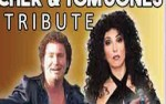 Image for Cher / Tom Jones Tribute