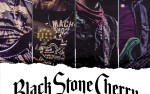 Image for BLACK STONE CHERRY  18+