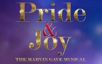 Image for Pride & Joy - The Marvin Gaye Musical- Wed, May 1, 2019 @ 7:30 pm