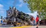 Image for Excursion Train