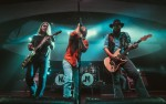 Image for Whiskey Myers - Die Rockin' Tour
