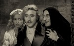 Image for Young Frankenstein--Silver Screen Classic Film