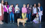 Image for Canine Court Pageant