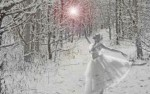 Image for A MidWinter Night's Dream