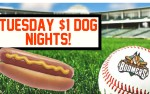 Image for Schaumburg Boomers vs River City Rascals