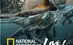 Image for National Geographic Live!  Nizar Ibrahim