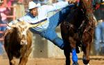 Image for Cowboys of Color 05/02 Sat 5:30 PM