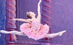 Image for Live Stream- Gary Taylor Dance Nutcracker