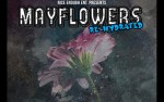 Image for Mayflowers Re-Hydrated - Week #3