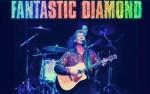 Image for Fantastic Diamond - Tribute to Neil Diamond