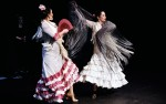 Image for Espacio Flamenco presents Fall in Love with Flamenco - on the Portland Music Stream