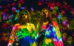 Image for Hippie Sabotage with Sebastian Paul