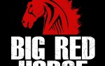 Image for Big Red Horse