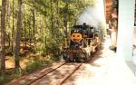 Image for Track or Treat Halloween Express