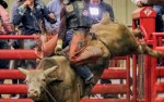 Image for Four States PBR Shoot Out