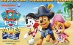 Image for PAW Patrol Live! Great Pirate Adventure