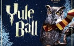 Image for Yule Ball