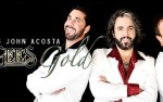 Image for BEE GEES GOLD / TRIBUTE TO THE BEE GEES