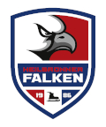 Image for 14.12.2018 - Dresdner Eislöwen vs. Heilbronner Falken