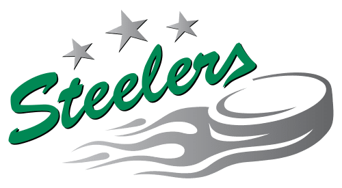 Image for Bayreuth Tigers vs. Bietigheim Steelers